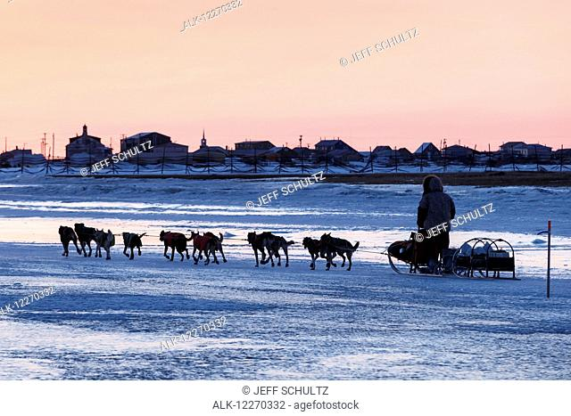 Jeff King runs on the slough ice just after sunset with Unalakleet in the background during the Iditarod Sled Dog Race 2014