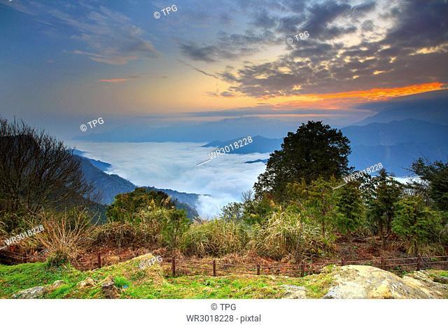 Ali,cherry blossom,Xiao Liyuan Mountain,sunrise