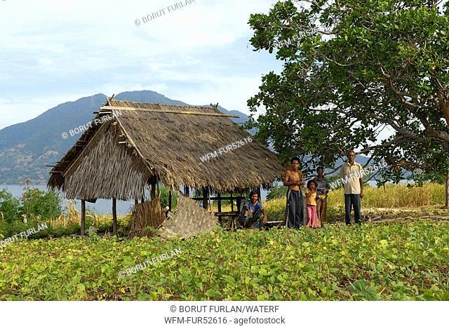 Farmer on Pantar Island, Alor Archipelago, Lesser Sunda Islands, Indonesia