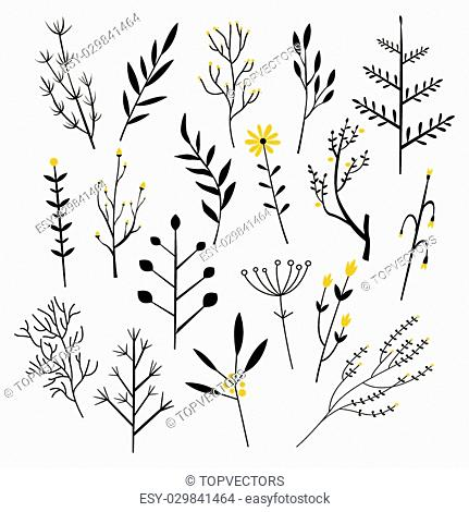 Plants, Flowers and Branches. Vector Illustration Collection