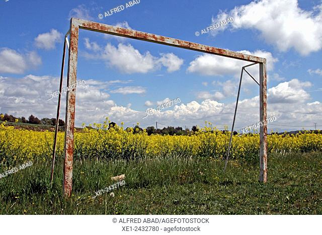 Football goal, soybean field, Bages, Catalonia, Spain