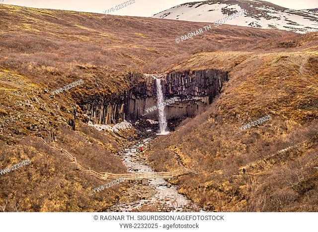 Svartifoss Black falls), Iceland