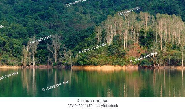 Beautiful lake pond