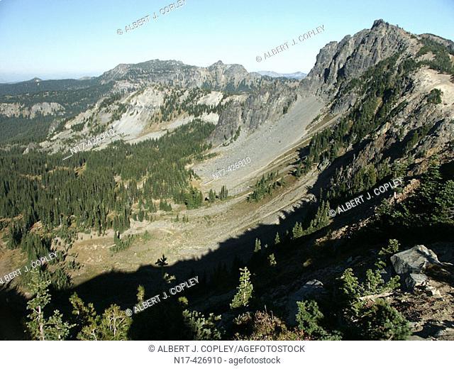Glacial valley, Mt. Rainier. Washington, USA