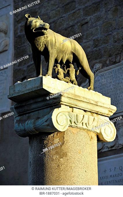Capitoline Wolf with Romulus and Remus on the Senatorial Palace, Capitol square, Piazza del Campidoglio, Capitoline Hill, Rome, Lazio, Italy, Europe