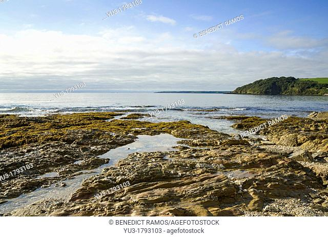 Rocky shoreline by Gyllygngvase beach, Falmouth, Cornwall, England, UK