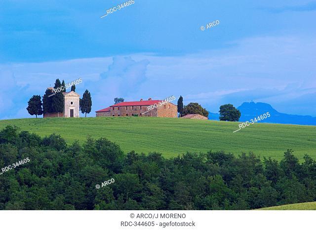 Val d'Orcia, Orcia Valley, Chapel of Madonna di Vitaleta, Pienza, Siena, Tuscany, Italy