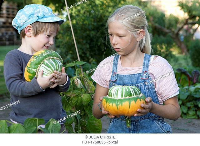 Girls harvesting gourds in garden