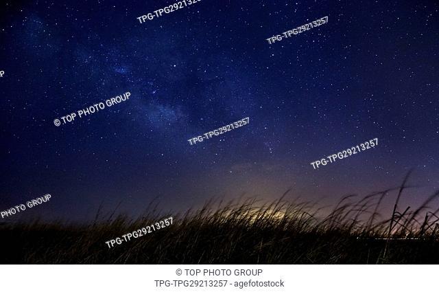 grass under starry sky