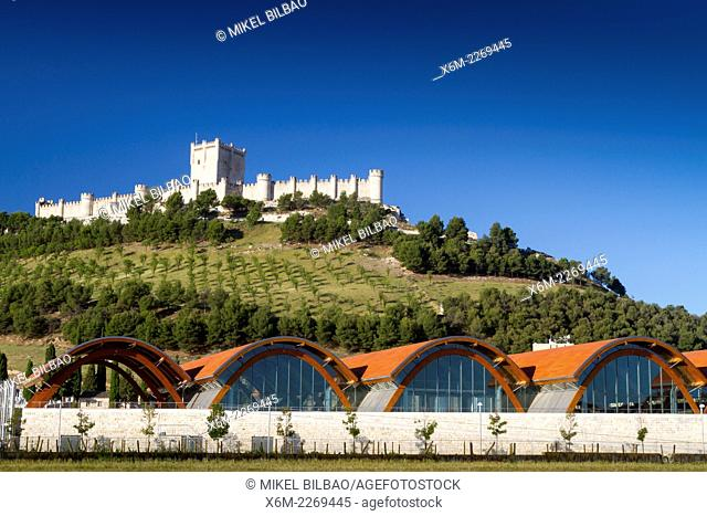"""""""""""Protos"""" winery and Castle. Peñafiel village. Ribera de Duero region. Valladolid. Castile and Leon. Spain, Europe"