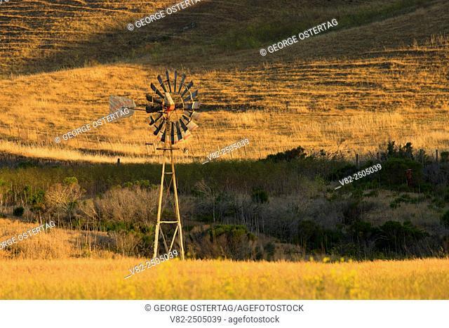 Windmill, Estero Bluffs State Park, California