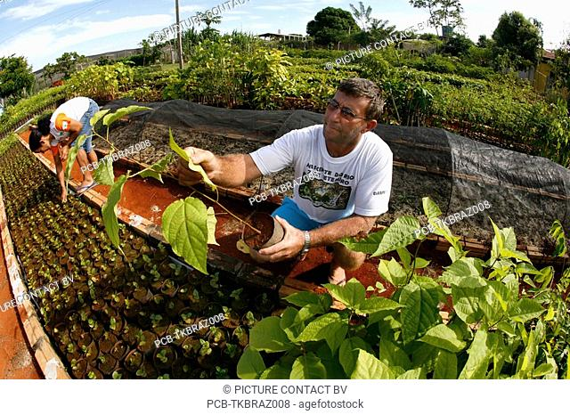 ISA is a Brazilian NGO supported by several european donors and manages a tree nursery for replaning forest They encourage Indian communities and farmers to...