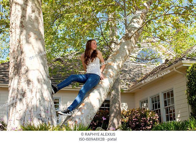 Teenage girl sitting in tree