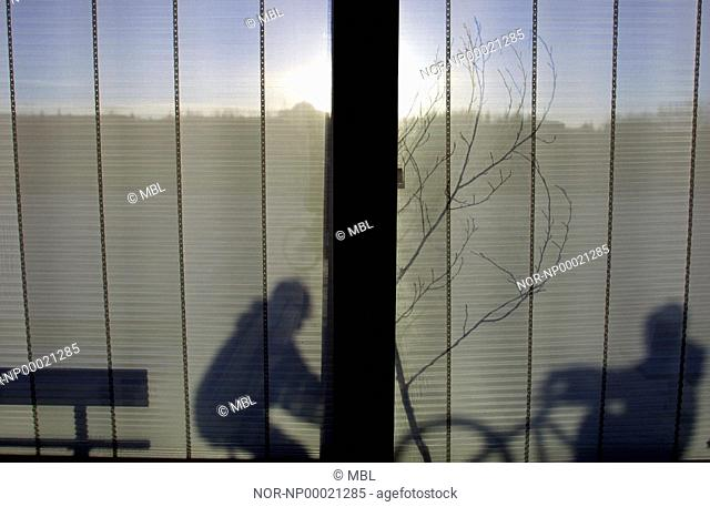 A shadow on curtains of a bench and a bicycle