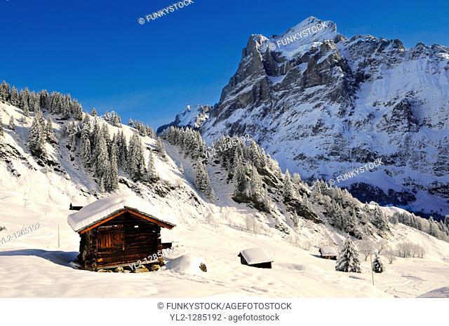 Mountain chalet in winter looking towards the wetterhorn mountain  Grindelwald, Swiss Alps