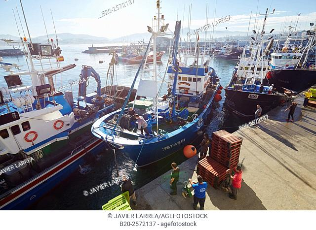 Fishing port. Hondarribia. Gipuzkoa. Basque Country. Spain