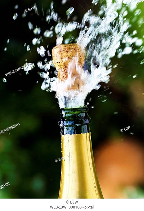 Opened champagne bottle with flying cork