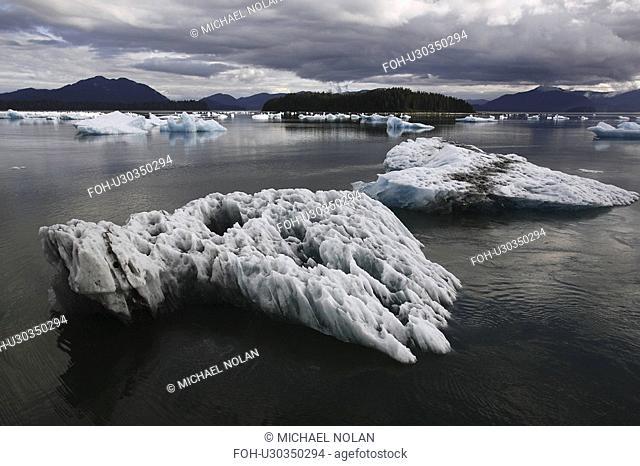 Calved icebergs and bergy bits fallen from the Le Conte Glacier in Le Conte Bay, Southeast Alaska, USA. Le Conte glacier is the southernmost tidewater glacier...