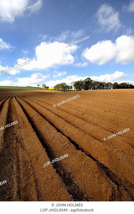 Looking out across a ploughed field. Fettercain is well known to anyone who listens to Radio Scotland traffic broadcasts in winter because it lies at the...