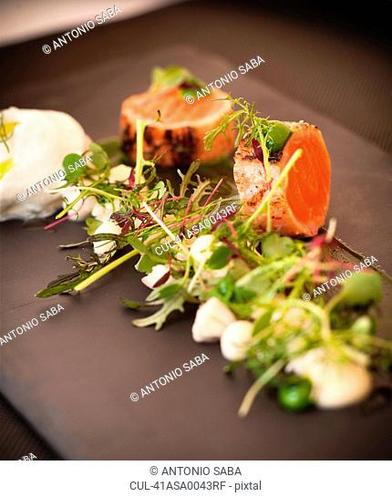 Plate of seared salmon and salad