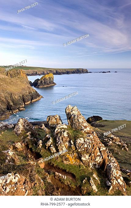 Cornish cliffs above Kynance Cove on the Lizard, Cornwall, England, United Kingdom, Europe