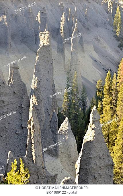 Petrified fumarole chimneys, lava columns, in the canyon at Sand Creek, The Pinnacles, Crater Lake National Park, Oregon, USA