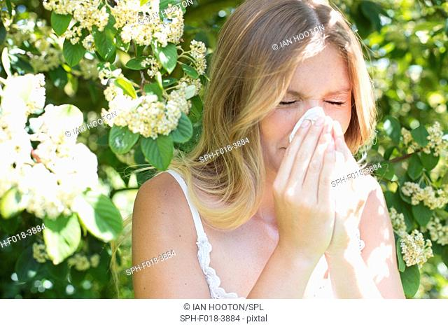 MODEL RELEASED. Young woman blowing nose on tissue