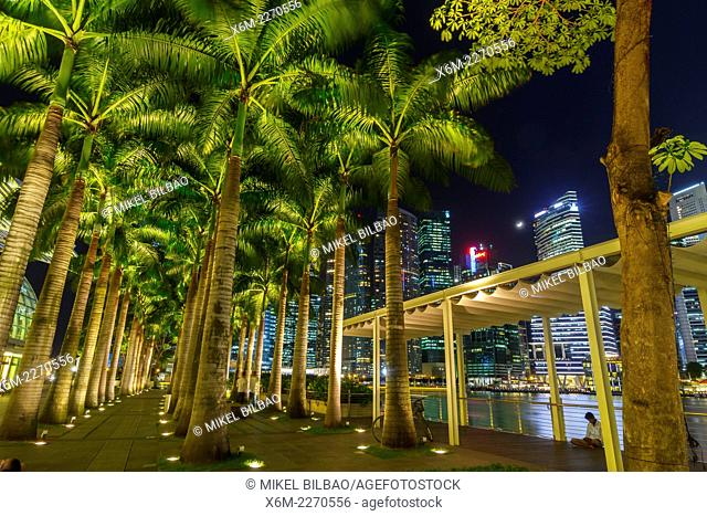 Skyscrapers and promenade at night. Singapore, Asia