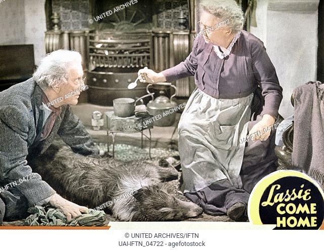 Lassie Come Home, aka: Heimweh, USA 1943, Regie: Fred M. Wilcox, Darsteller: Ben Webster, Dame Mae Whitty