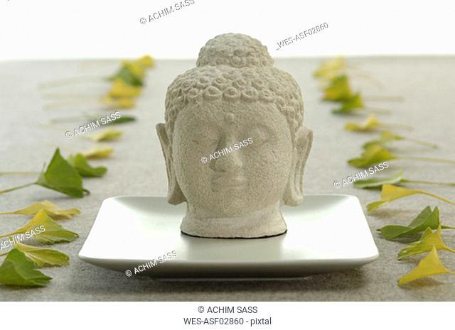 Buddha head and ginkgo leaves