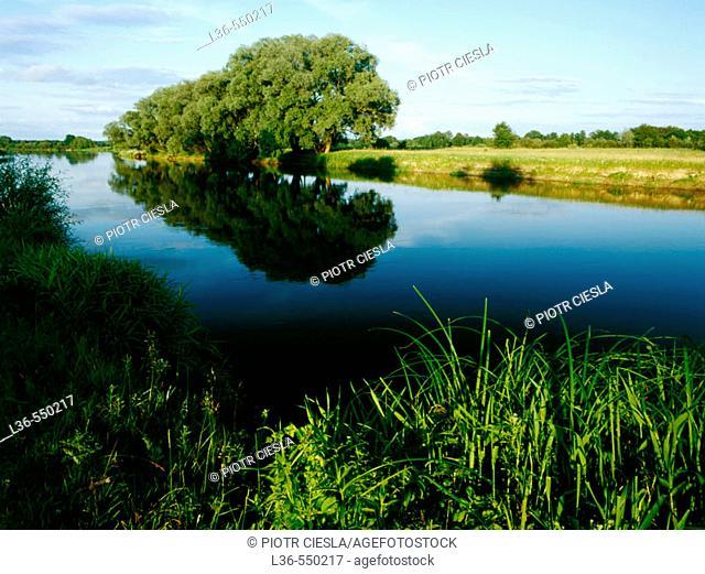 River. Podlasie region, Eastern Poland