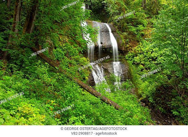 Royal Terrace Falls, McDowell Creek County Park, Linn County, Oregon