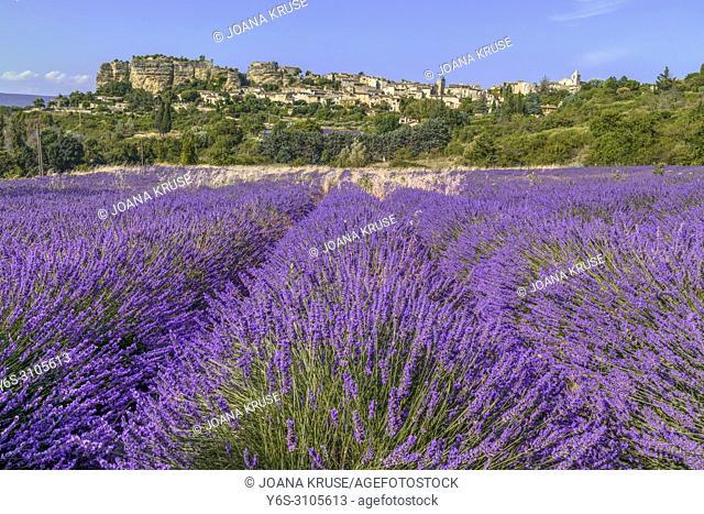 Saignon, Vaucluse; Provence, France, Europe