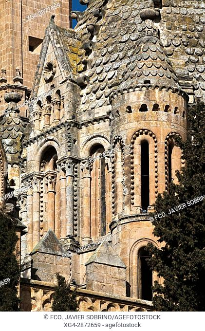 Torre del Gallo. Detalle del cimborrio gallonado de la Catedral Vieja. Salamanca. Castilla-León. España. Europa