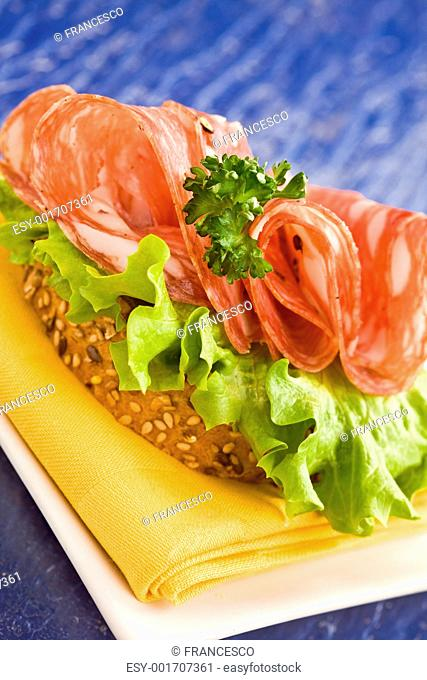 Sandwich with Salami and Salad