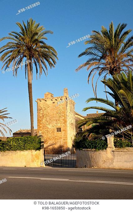 Are Catlar, Campos del puerto, Majorca, Balearic Islands Spain