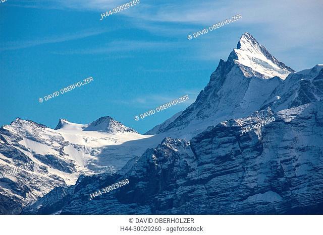 The Alps, mountains, the Bernese Oberland, Finsteraarhorn, autumn, sceneries, Niederhorn, Switzerland