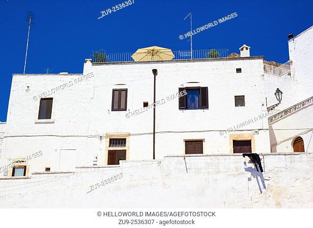Terrace above the white city of Ostuni, Brindisi Province, Puglia, Italy, Europe. . Ostuni is known as La Citta Bianca, the white city