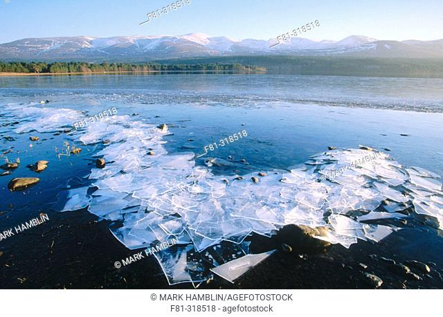 Loch Morlich in winter. View to Cairngorms mountains. Cairngorms National Park. Scotland. UK