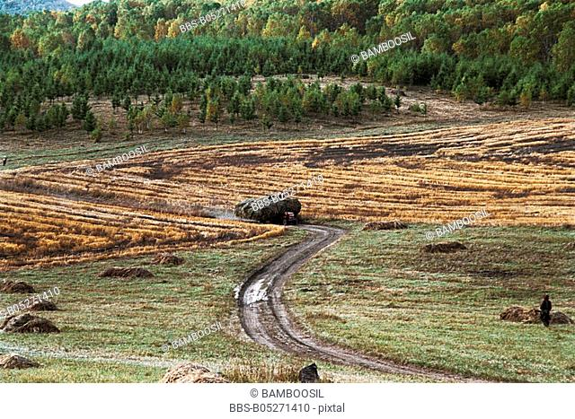 Mulan farmland, Hebei Province of People's Republic of China