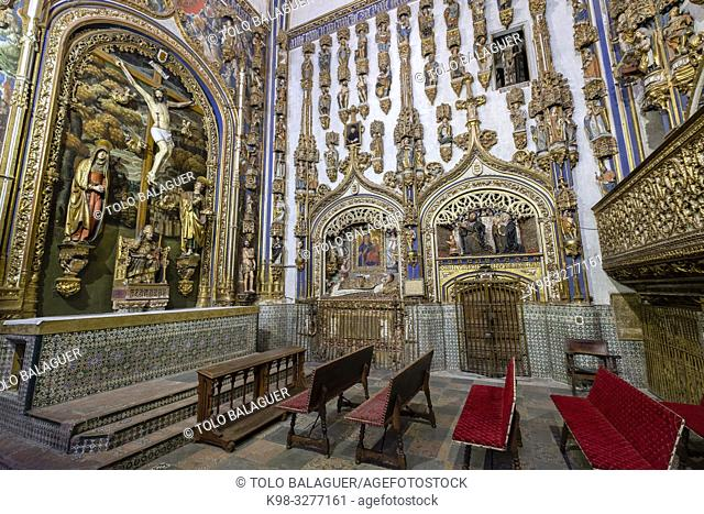capilla dorada, Catedral de la Asunción de la Virgen, Salamanca, comunidad autónoma de Castilla y León, Spain