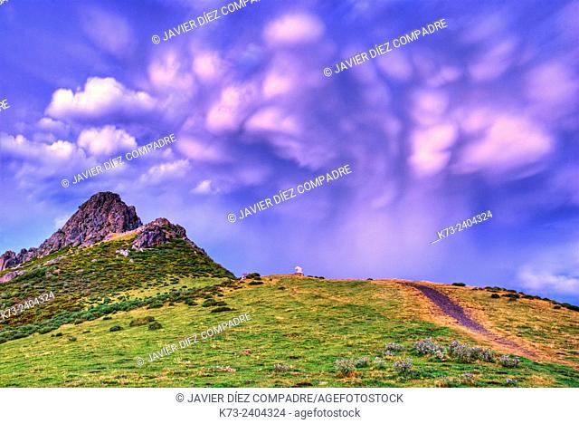 Monument to Bear. Collado de Llesba. Picos de Europa National Park. Cantabria. Spain