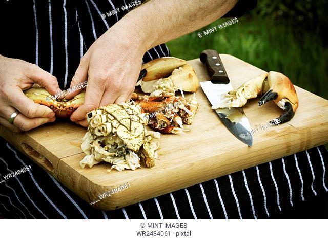 Close up of a chef preparing a crab