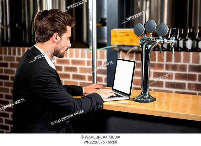 Handsome businessman using laptop