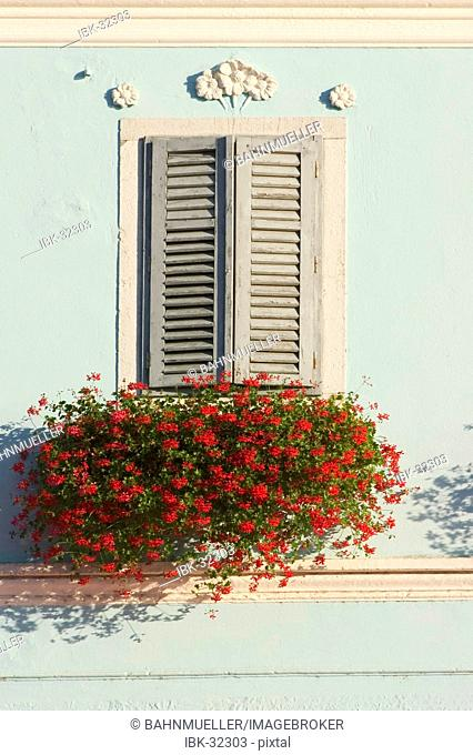 Vrsar Istria Croatia flower decorated window with stucco elements in the old town
