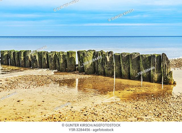 Old Groynes at the beach of the Baltic Sea near Kolobrzeg. Groynes are intended to break the shaft and to prevent the erosion of the coast