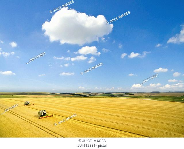 Aerial landscape view of combine harvester in sunny golden barley field in rural countryside