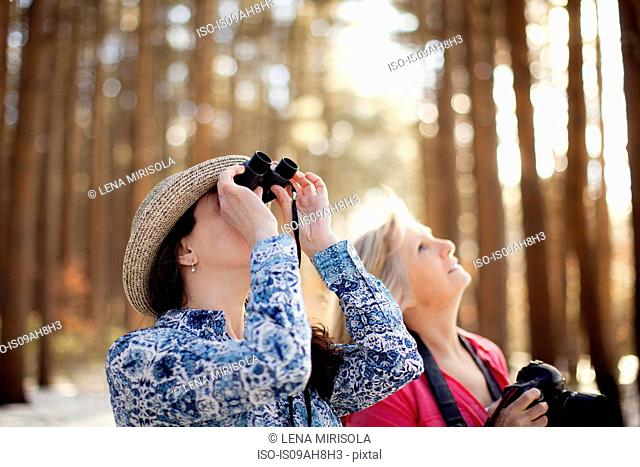Two mature women bird watching in forest