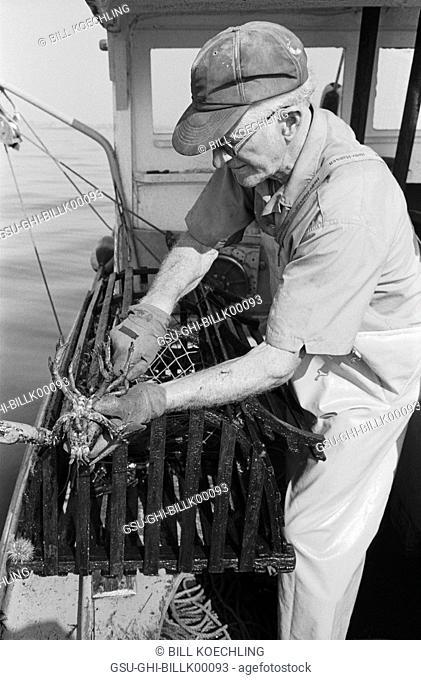 lobsterman, occupations, lobster