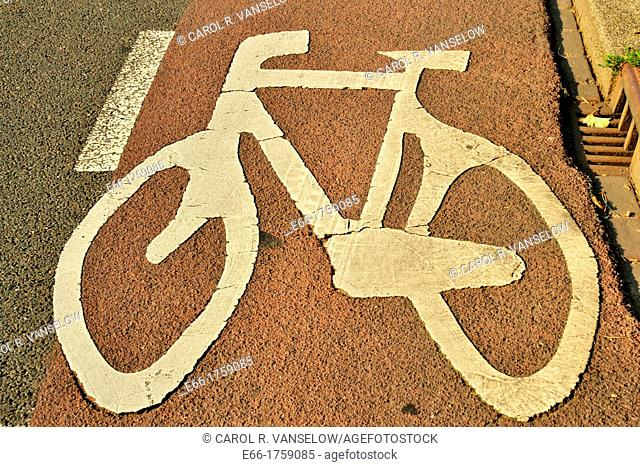 bicyle lane on street in Maastricht